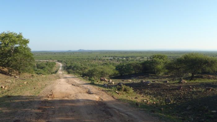hunting in zimbabwe