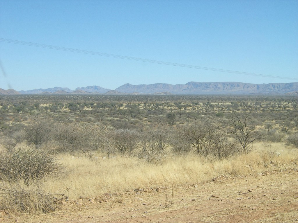 hunting in namibia 2