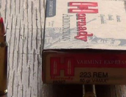Hornady .223 Remington 55gr V-MAX Review