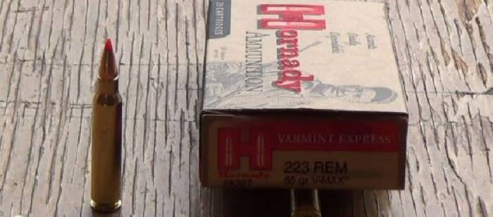 Hornady .223 Remington 55gr V-MAX Review