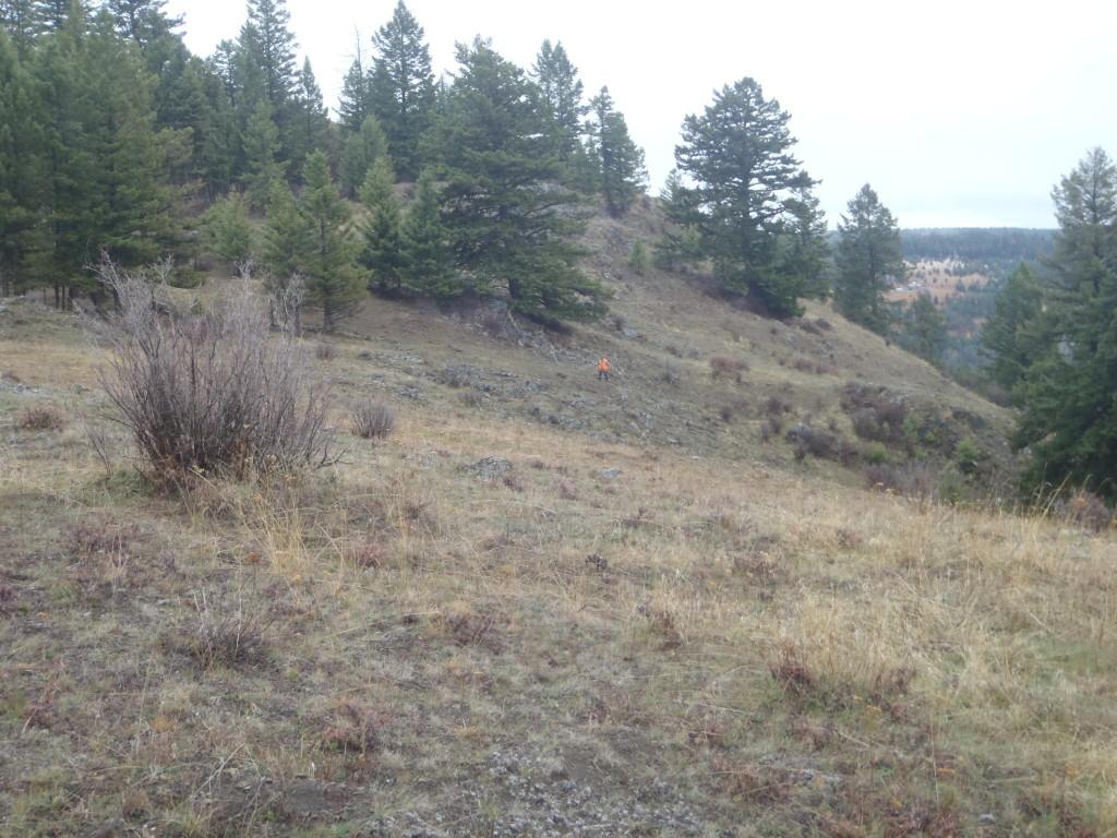 grouse hunt terrain