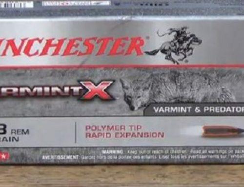 Winchester .223 Remington 55gr Varmint X Review