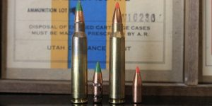 223 vs 5.56: Which One You Should Shoot In Your AR-15?
