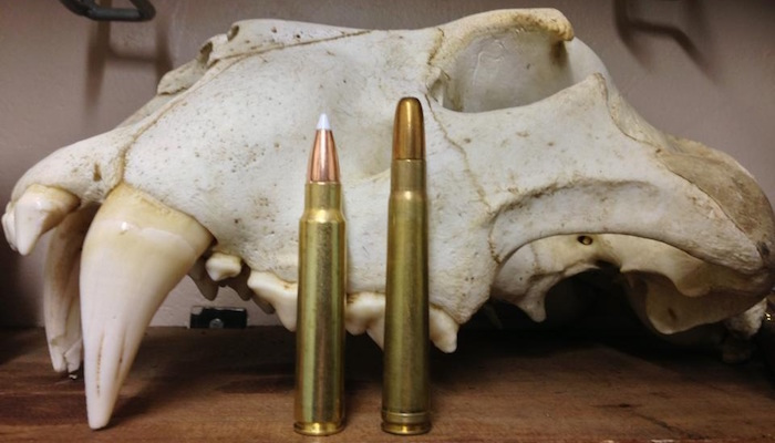 The  375 Ruger: An Up And Coming Dangerous Game Cartridge