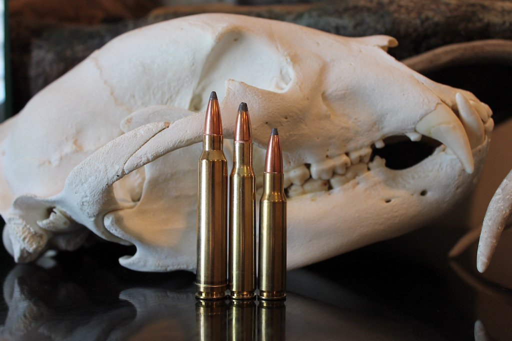 photo of best deer hunting caliber 308 vs 30-06 vs 300 Win Mag