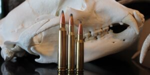 308 vs 30-06 vs 300 Win Mag: Which Should You Hunt With In 2020?