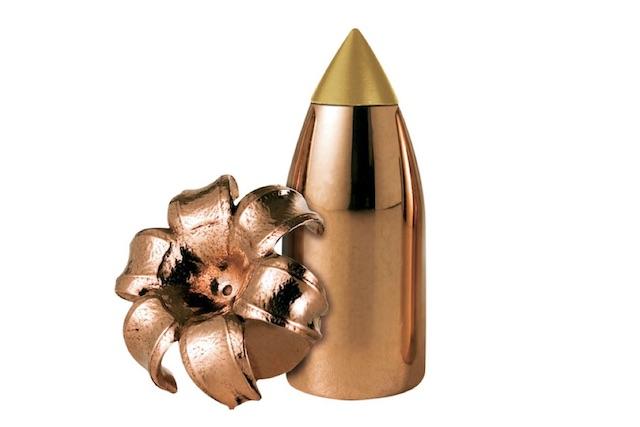 best muzzleloader bullet reminton premier accutip