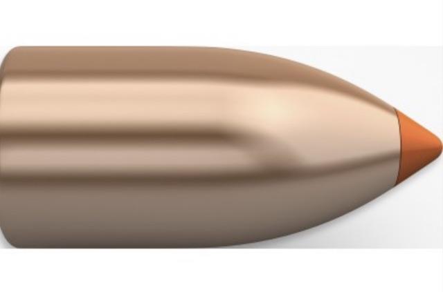 best muzzleloader bullets nosler ballistic tip