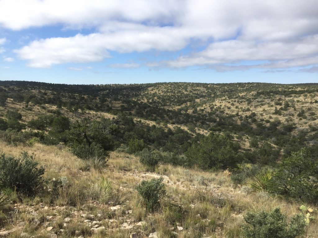 Here's How My 2017 Self-Guided New Mexico mule deer hunt On Public Land Went terrain
