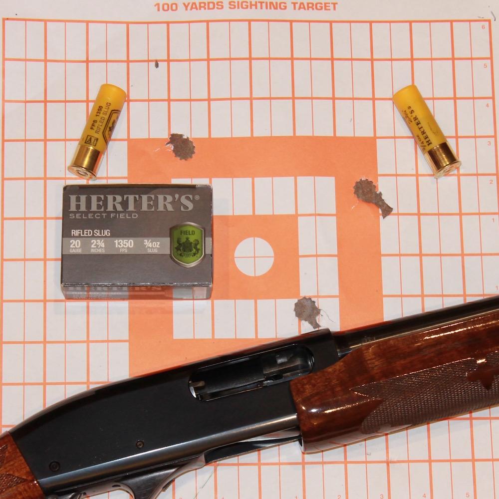 what is a paradox gun 870