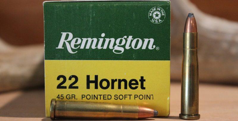 22 hornet box cartridges