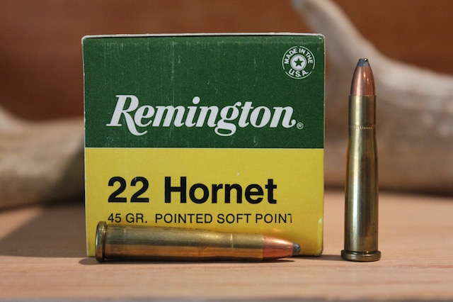 22 hornet hunting ammo