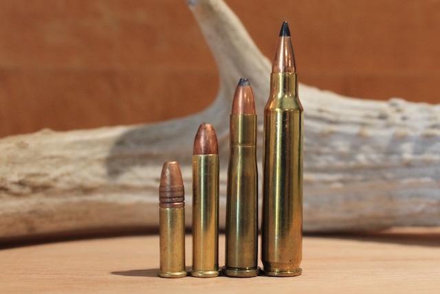 22 long rifle 22 magnum 22 hornet 223 remington
