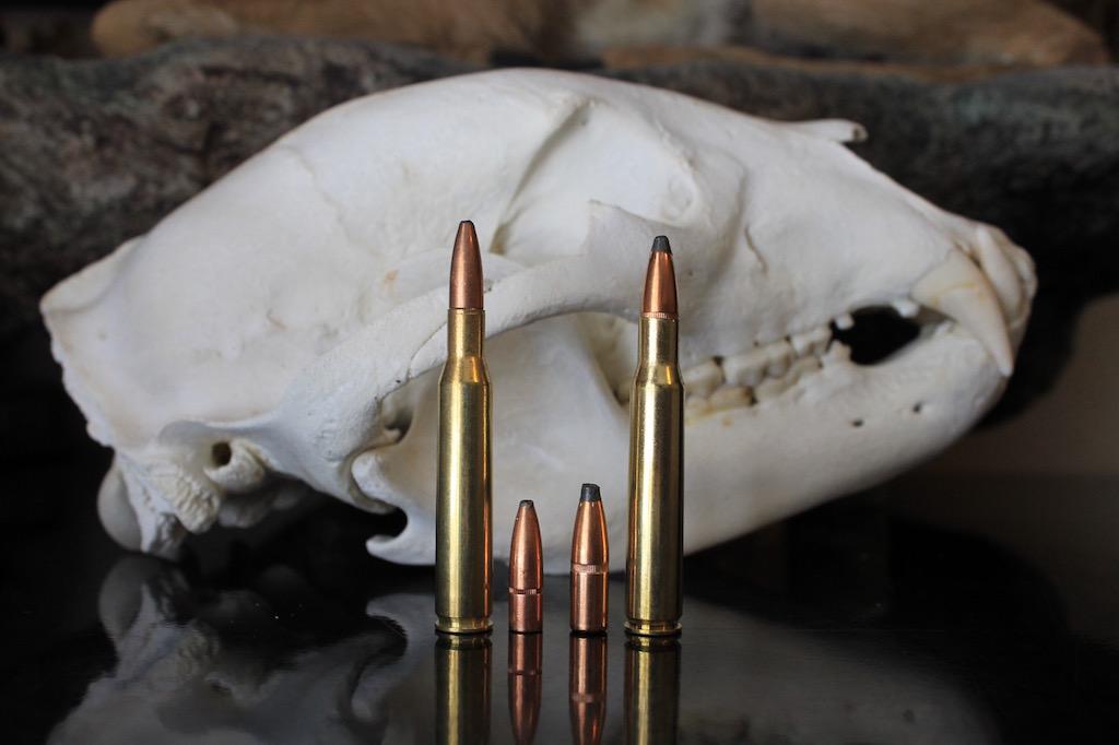 270 vs 30-06 bullet comparison