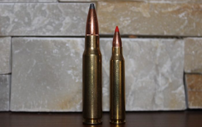 223 vs 308 featured