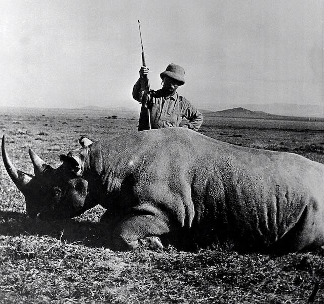 405 winchester Rhinoceros