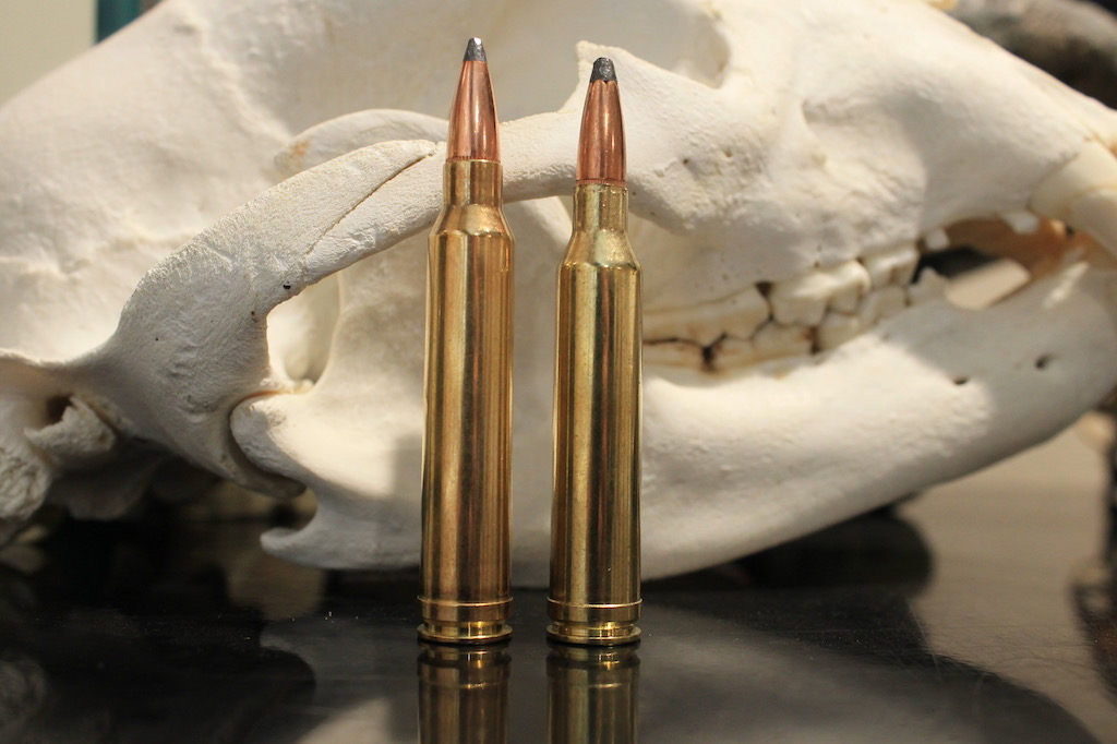 7mm Rem Mag vs 300 Win Ma bullets