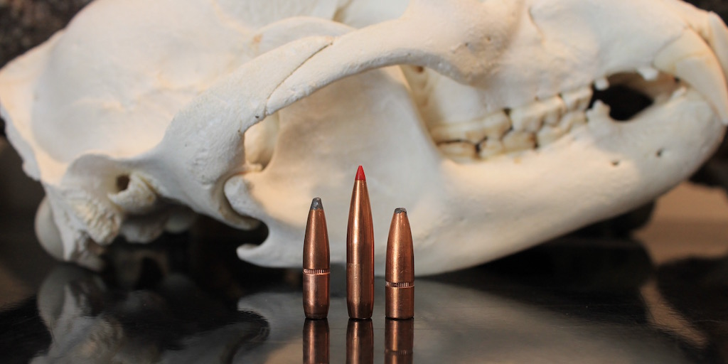 25-06 vs 6.5 creedmoor vs 270 winchester bullets