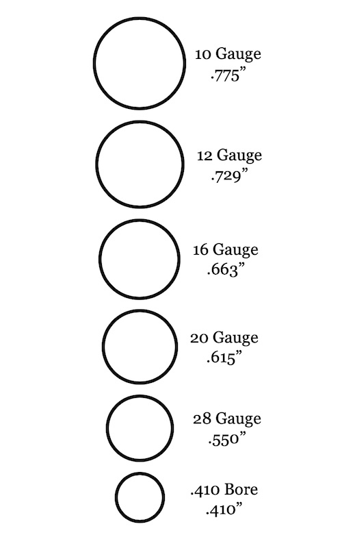 picture of 10 vs 12 vs 16 vs 20 vs 28 vs 410 shotgun gauges compared