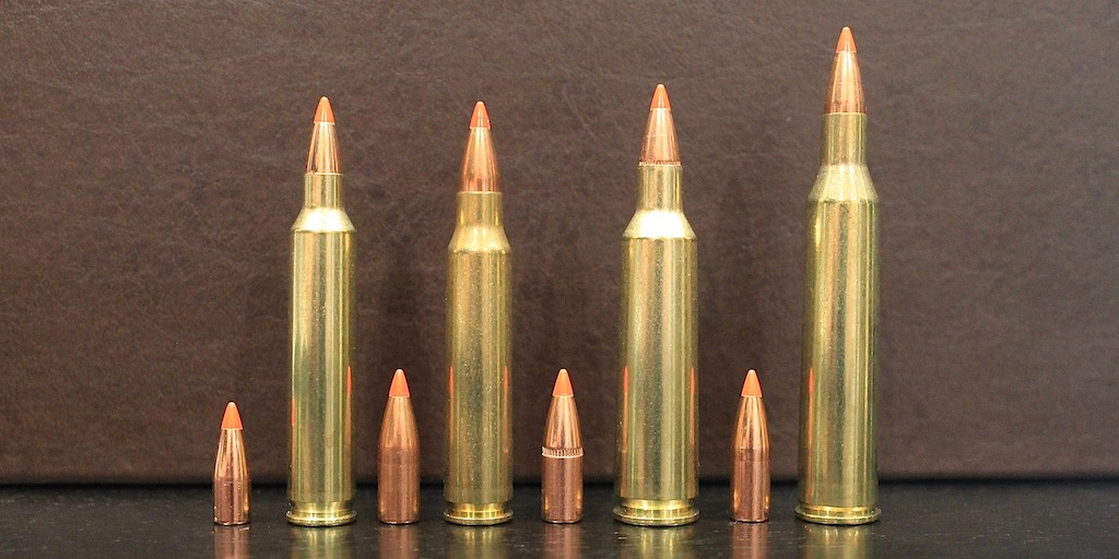 picture of 22-250 vs 223 vs 204 Ruger vs 220 Swift bullets
