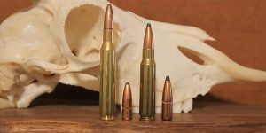 270 vs 308: Which One Should You Hunt With?