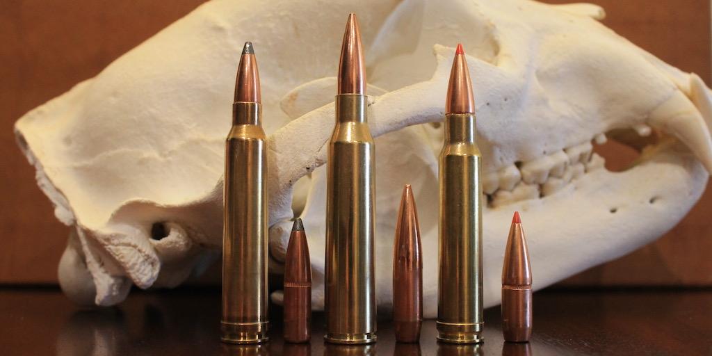 picture of 300 Win Mag vs 338 Lapua vs 338 Win Mag bullets