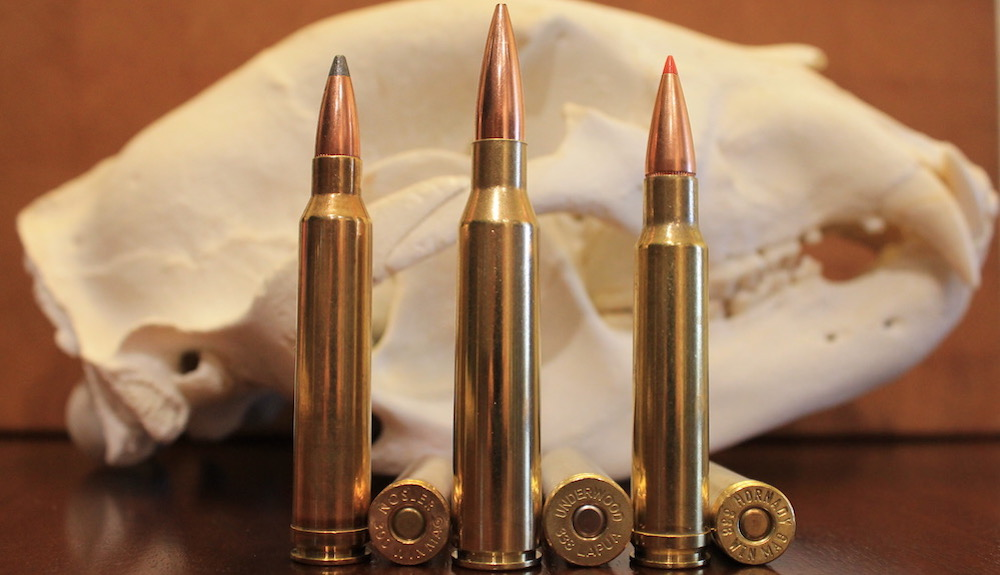 300 Win Mag vs 338 Lapua vs 338 Win Mag: Picking The Right