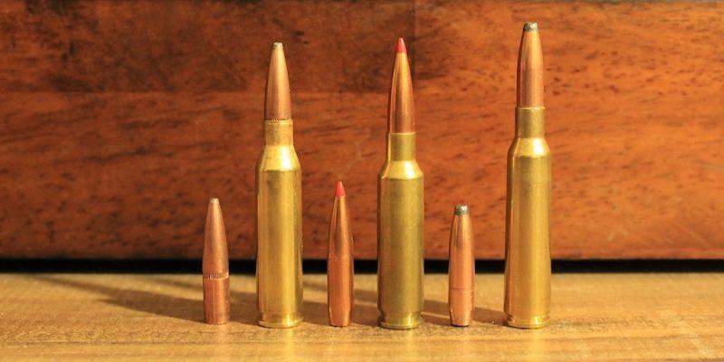 260 Remington vs 6 5 Creedmoor vs 6 5x55 Swede: Choosing The