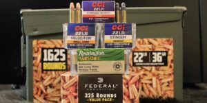 Best 22LR Ammo For Hunting, Plinking, Target Shooting & More