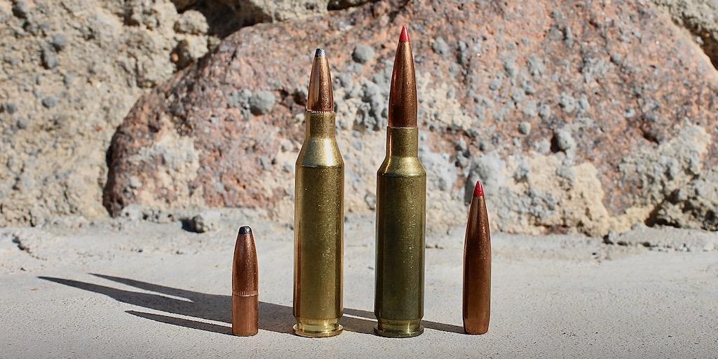 picture of 6.5 creedmoor vs 243 bullets