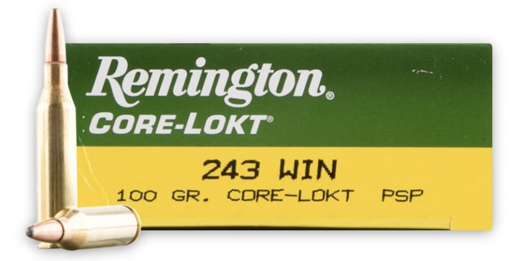 picture of best 243 ammo for deer hogs and varmints core lokt