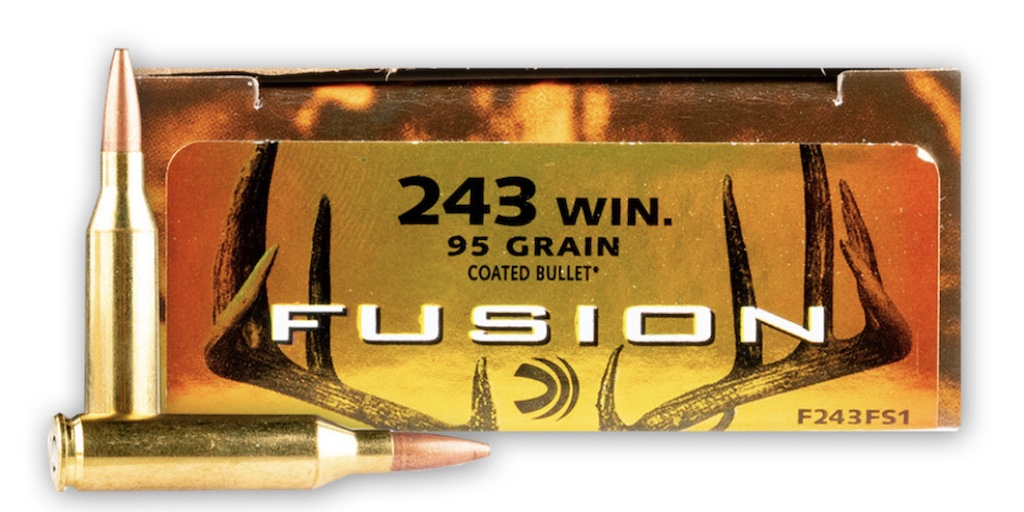 picture of best 243 ammo for deer and hogs and varmints federal fusion