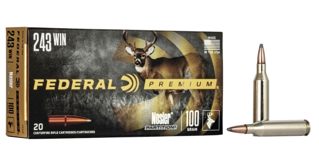 picture of best 243 ammo for deer hogs and varmints partition