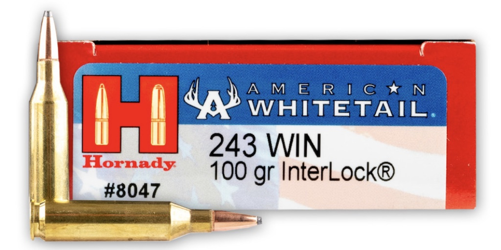 picture of best 243 ammo for deer hogs and varmints hornady american whitetail