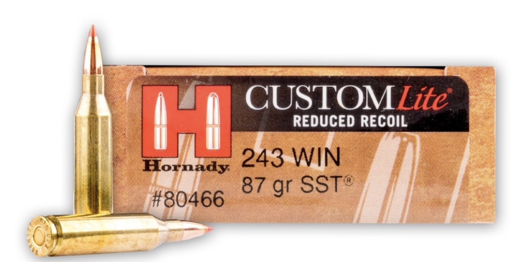 picture of best 243 ammo for deer hogs and varmints hornady lite