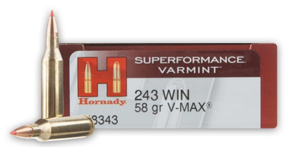 picture of best 243 ammo for deer hogs and varmints hornady varmint