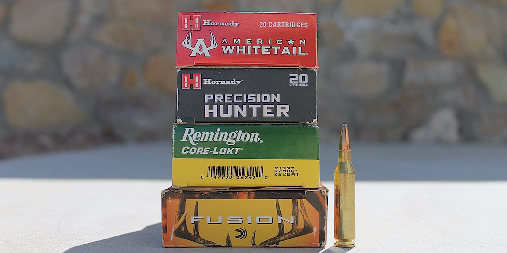 picture of best 243 ammo for deer and hogs and varmints